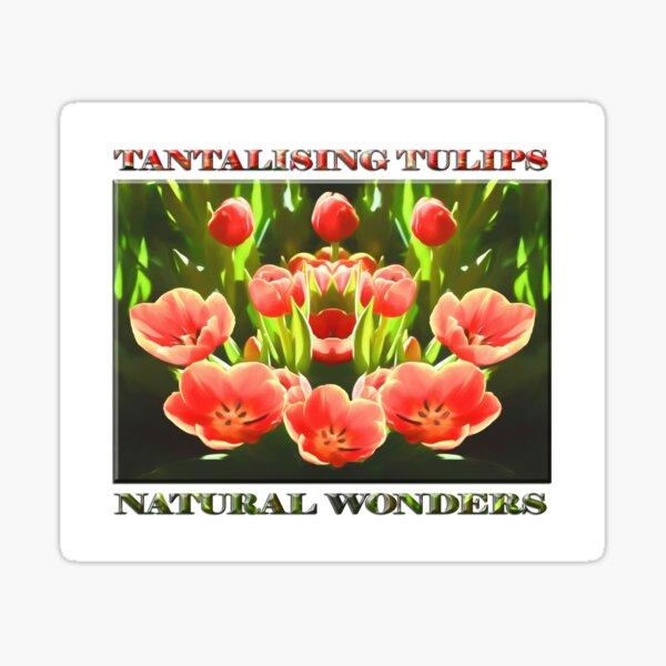 Tulips (digital painting) Sticker