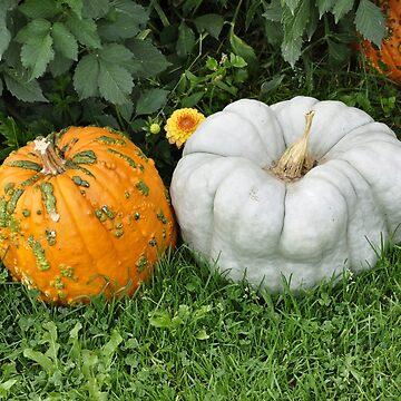 Hood River Oregon - Fall Pumpkin Season by IMAGETAKERS