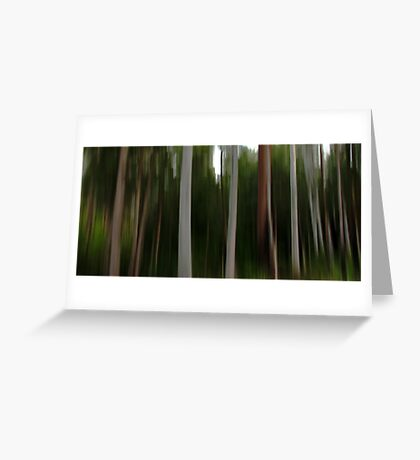 Forest of the Eucalypts Greeting Card