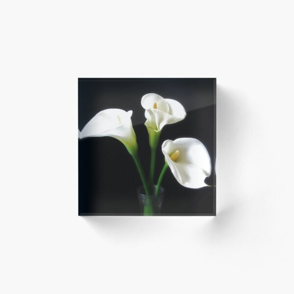 Elegant Calla Lily Flowers 10 Acrylic Block