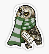 Cunning Short-Earred Owl Sticker
