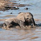 Cooling Off by Vickie Burt