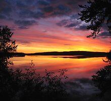 Painted Sky by McTavish