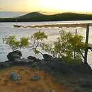 Wait it out. Cabbage Tree Creek. by andy  king