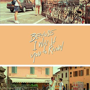 "Call Me By Your Name ""Because I Want You To Know"" by deerley"