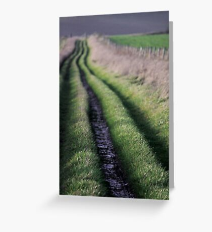 Path to Nature Greeting Card