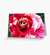 Red Pink Rose Flecked Greeting Card
