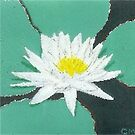 Lotus Eternal by Carol Megivern