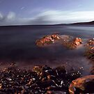 Terra Nullius  by Brian Carey