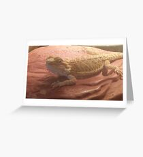 Beardie Love Greeting Card