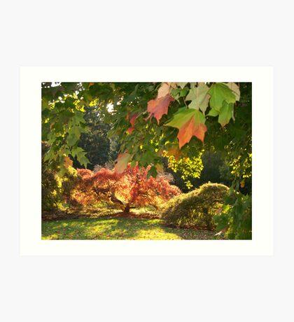 An  Autumn Scene   Art Print