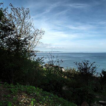 Garden View...............Lyme Regis. Dorset UK by lynn45
