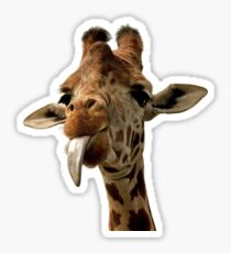 Giraffe tongue! Sticker