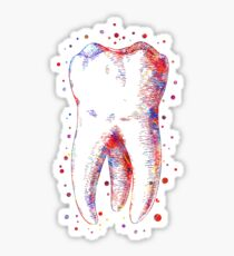 Human tooth, watercolor tooth, tooth, dental print Sticker