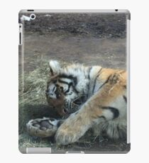 Kitty Playing iPad Case/Skin