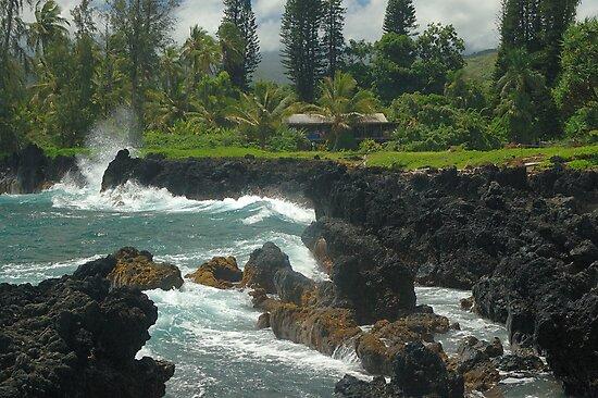 Ke'anae Beach Park, Ke'anae, Maui by fauselr