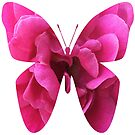 Hot Pink Rose Butterfly by Nancy Cupp