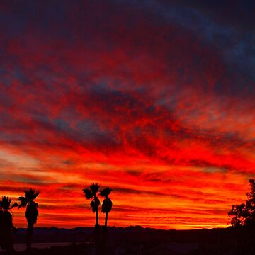 Vibrant Sky by tvlgoddess
