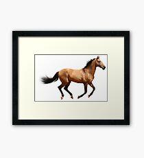 Laufendes Pferd Gerahmtes Wandbild