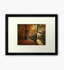 A Leafy Path Framed Print