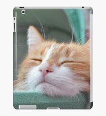 Sugarbunch sleeping in the babybuggy... iPad Case/Skin