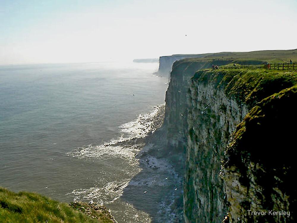 Bempton Cliffs by Trevor Kersley