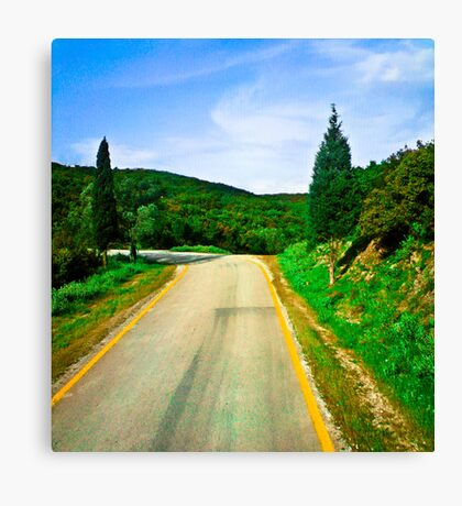 Dorothy's Alternative Route Canvas Print