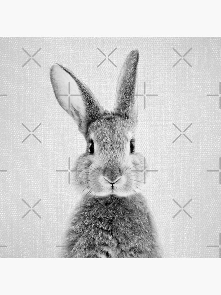 Kaninchen - Schwarz & Weiß von galdesign