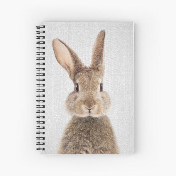 Kaninchen - bunt Spiralblock