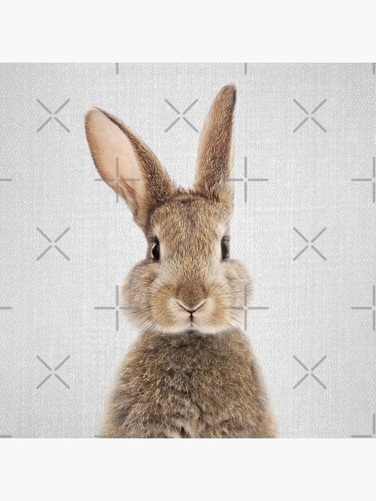 Kaninchen - bunt von galdesign