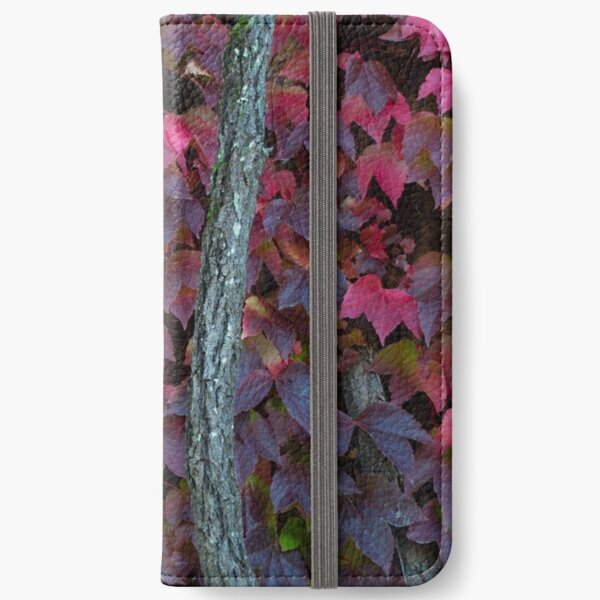 Fall 2018 Stickers iPhone Wallet