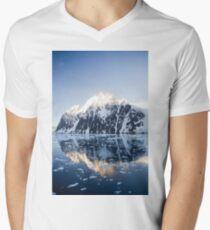Lemaire 2 Men's V-Neck T-Shirt