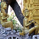 Cambodian chariot  by Martina Nicolls