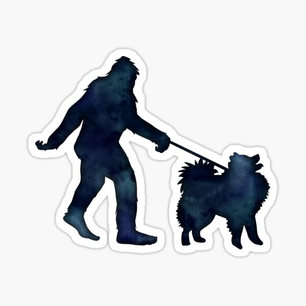 Bigfoot walking an American Eskimo dog on a leash Sticker