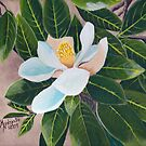 Magnolia Blossom ~ Original Oil Painting by Barbara Applegate