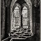 The Chapter House Window by Colin Metcalf