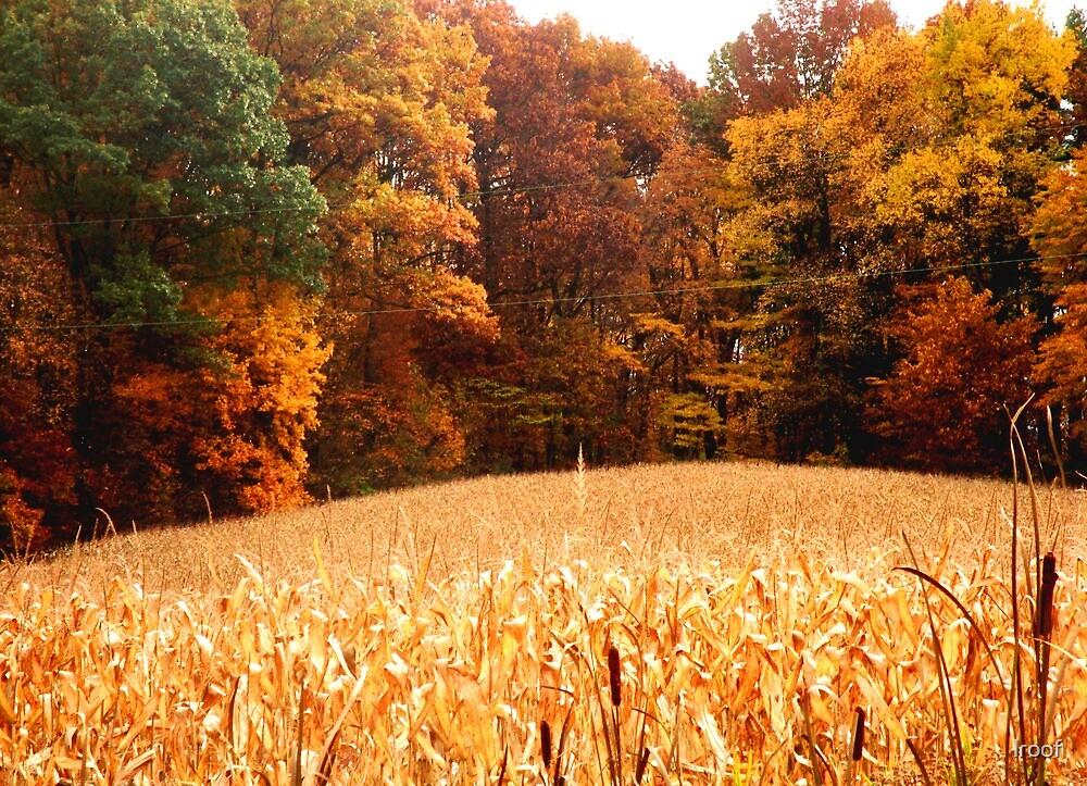 Harvest 2 by lroof