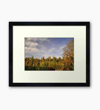 Autumnal colour's. #2 Framed Print