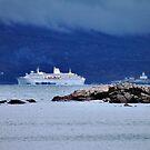 'Cruise Ship at the Egg Rock Light' by Scott Bricker