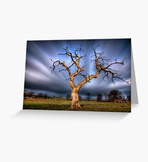 Windy day,Fintry   Greeting Card