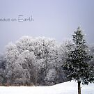 Peace on Earth by Robin Webster