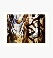 suzette's curtains Art Print