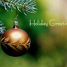 Holiday Greetings by Robin Webster