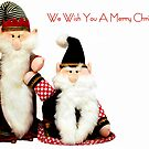 We Wish You a Merry Christmas by Robin Webster