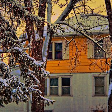 Snow Morning by vadim19