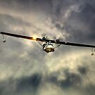 """PBY-5A Catalina """"Miss Pick Up"""" by larry flewers"""