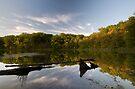 Lake Marie State Park by Michael Treloar