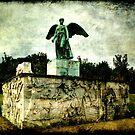 Copenhagen - Angel Satue by Jonicool