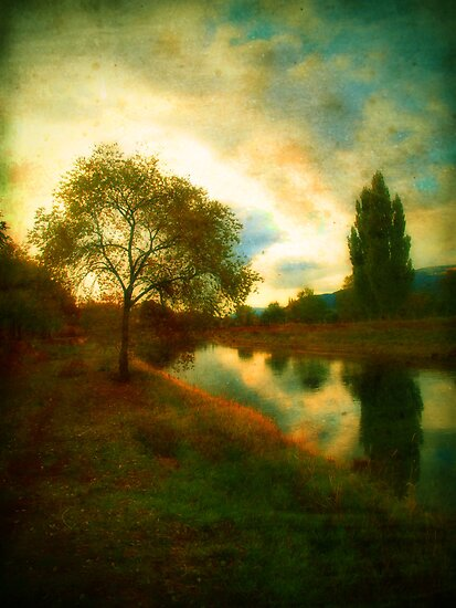 Autumn by the River Channel by Tara  Turner