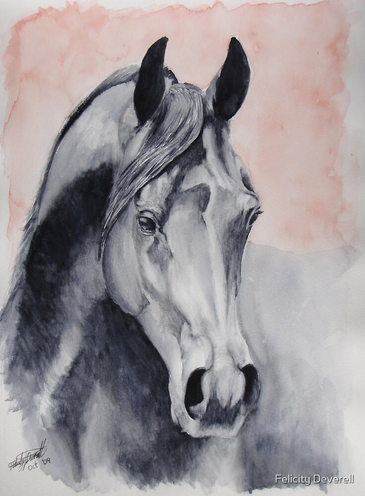 An Arabian Dream by Felicity Deverell